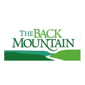 back mountain computer repair service